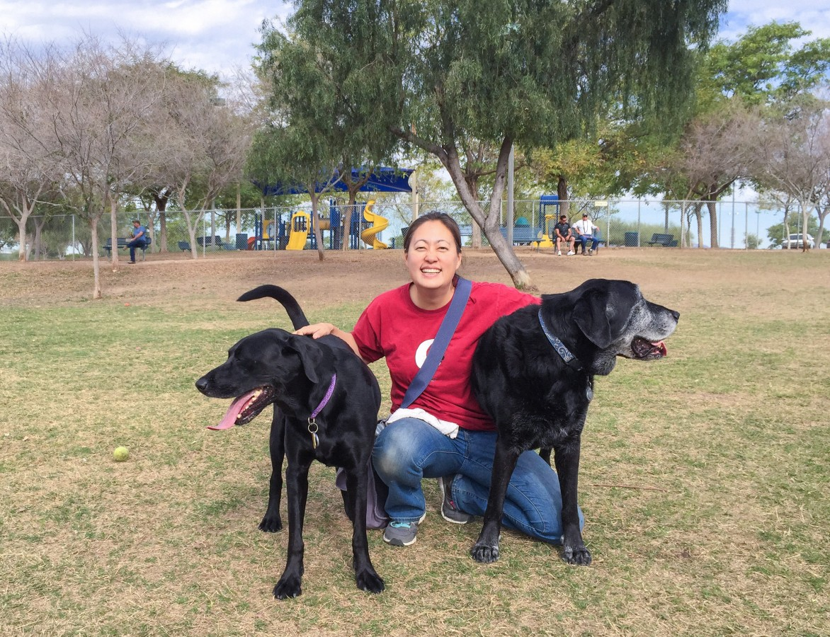 Kathie, Opie, and Max at the Quail Run Dog Park in Mesa AZ.