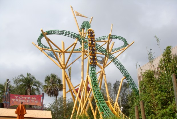 Cheetah Hunt (image courtesy of Wikimedia Commons)