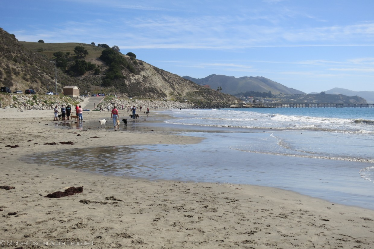 Strolling along the dog section of Avila Beach.