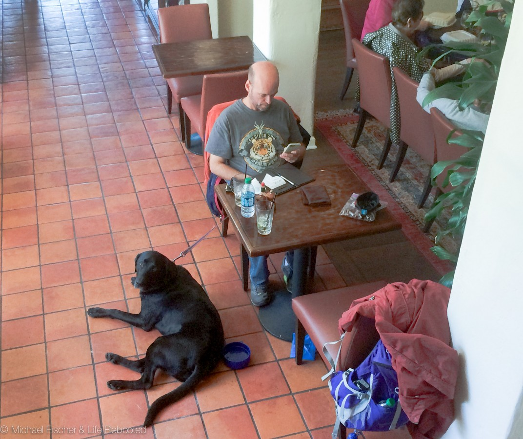 Opie likes checking out dog-friendly restaurants!