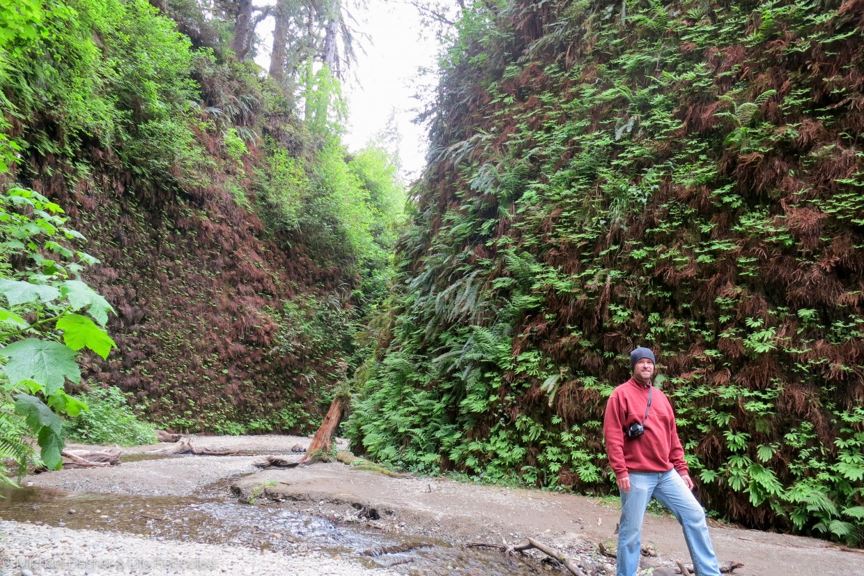 Mike in Fern Canyon