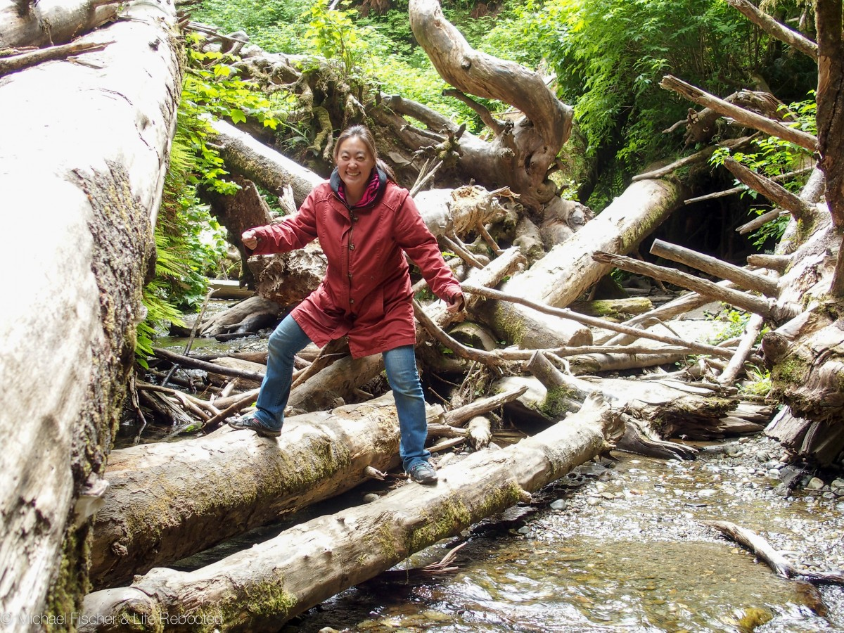 Scrambling over a logjam at Fern Canyon