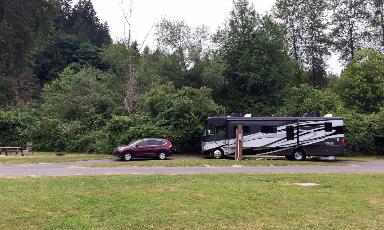 Rover and Red at our awesome campsite