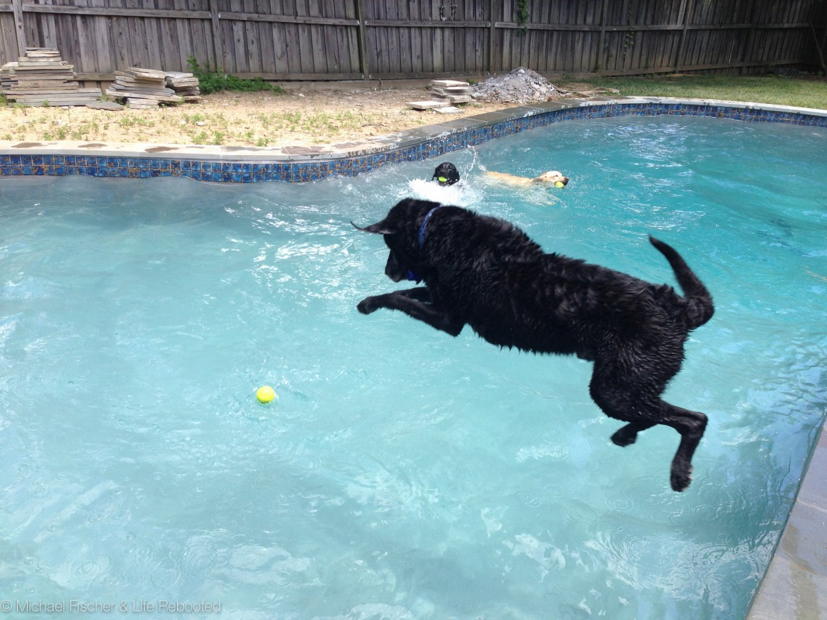It's hard to believe that just two years ago Max was still jumping in the pool.