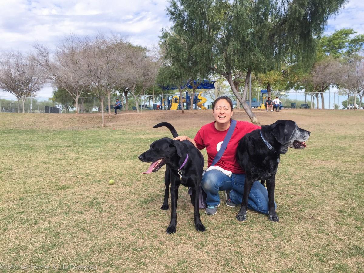 Quail Run Dog Park, Mesa AZ