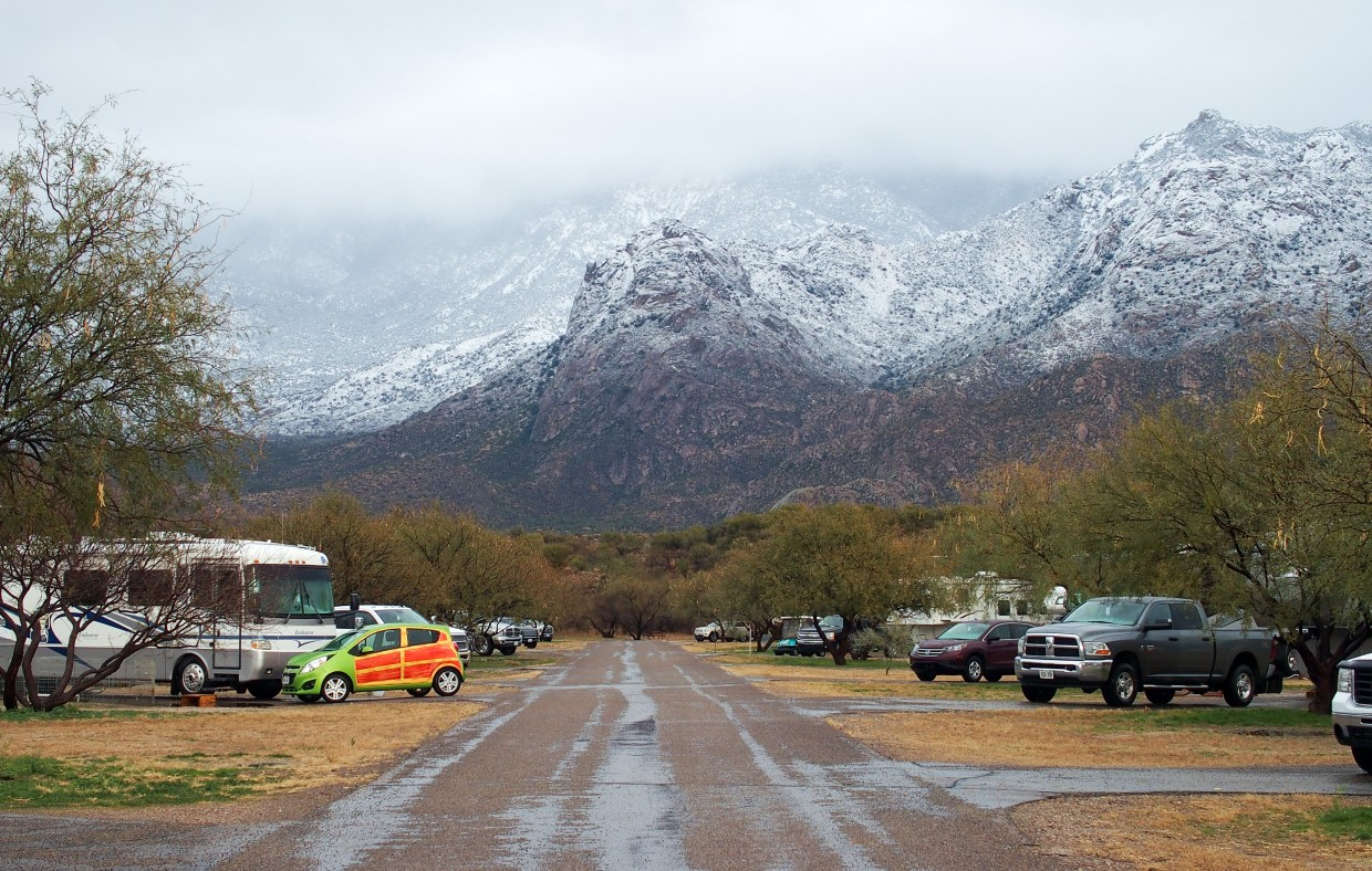 Rain for us meant snow in the Catalina mountains.