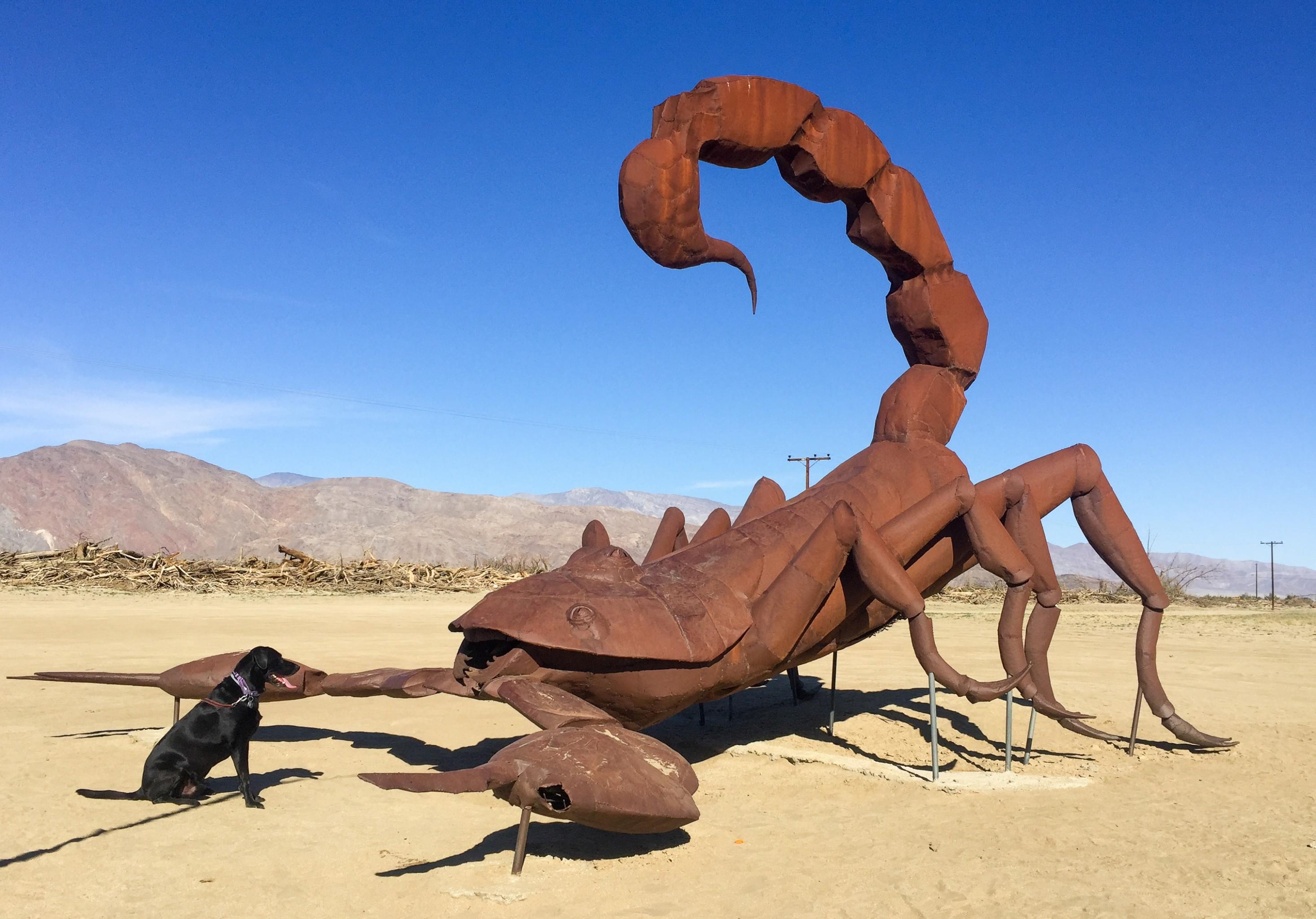 Life Rebooted Borrego Springs Sculpture Tour