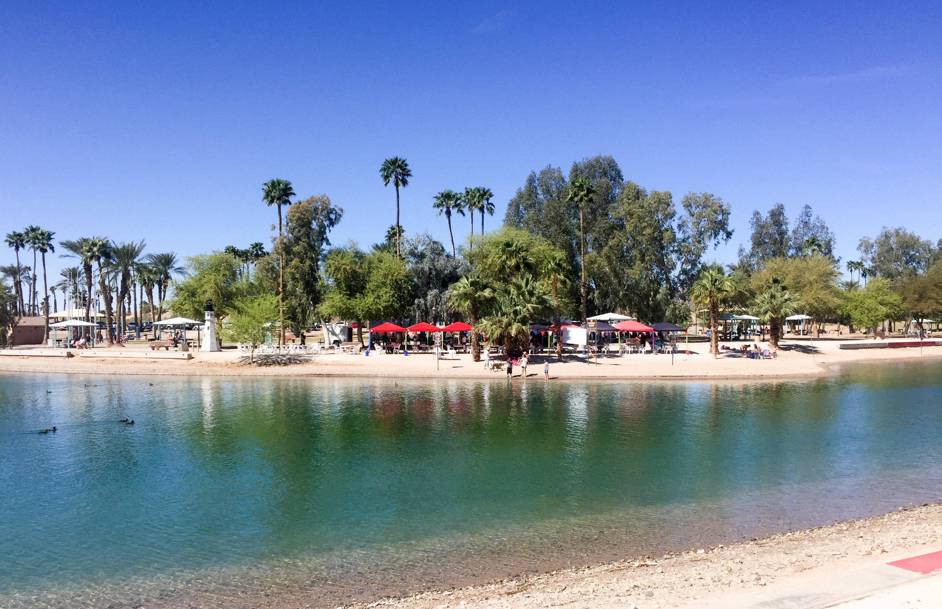Life Rebooted Lake Havasu Not Just For Spring Breakers