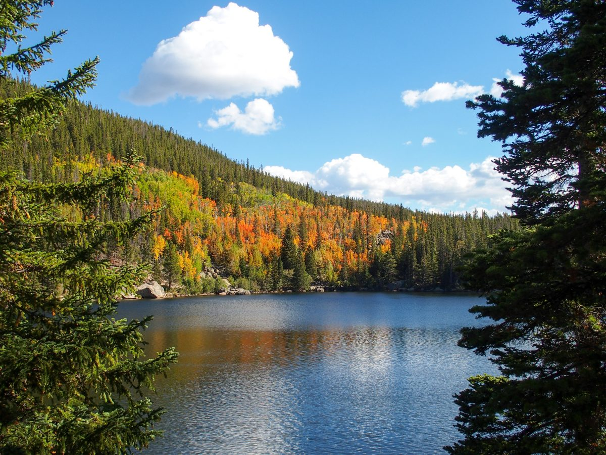 Bear Lake aspens beginning to change color